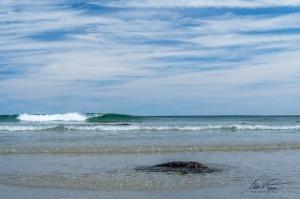 Beach Meadows Nouvelle-Écosse