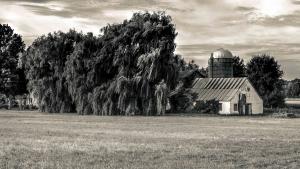 Les Jardins de Napierville